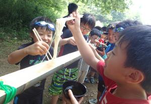 summer_activity